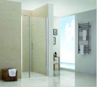Душевая дверь RGW LE-02